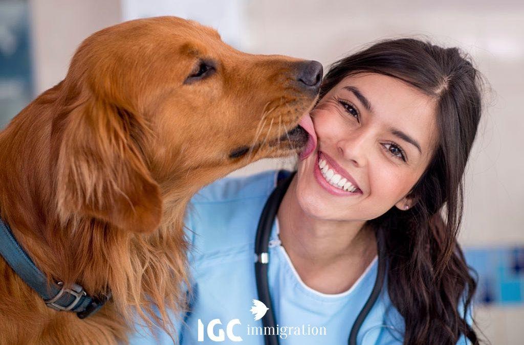 Du học ngành thú y tại Canada