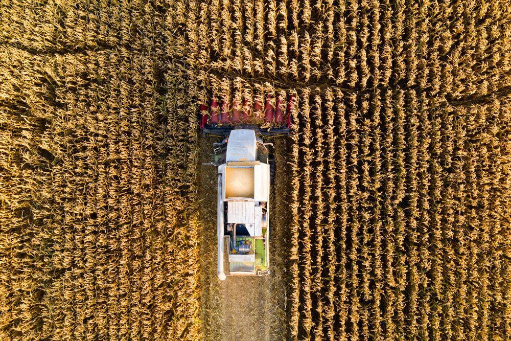 nông trại ở Canada